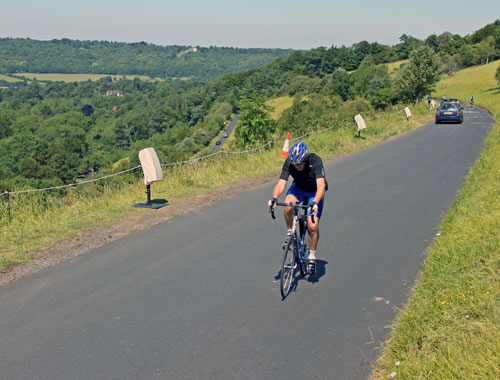 Box HIll Cycling